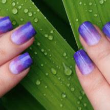 Как сделать омбре на ногтях: фото, видео