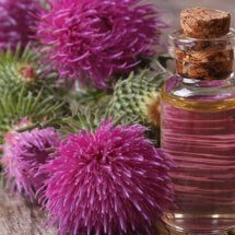 Репейное масло для волос. Состав, польза, применение